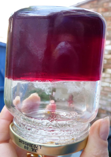 redcurrant jelly 12_set
