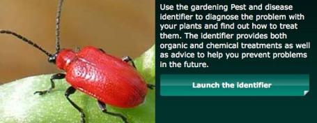 BBC pests identifier copy
