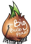 Big Bulb Plant copy