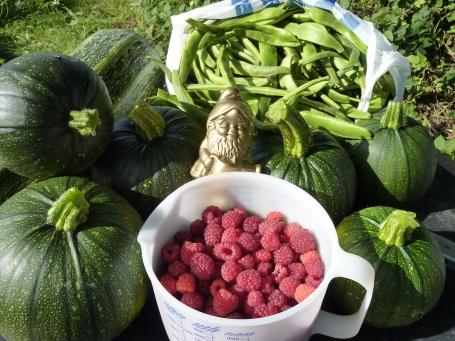 Bilbo's harvest day 1*