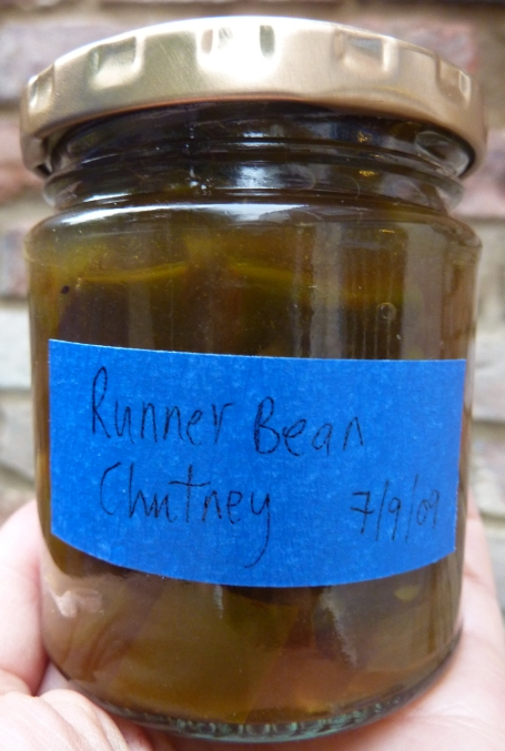 runner bean chutney close up