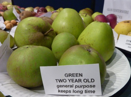 Apple day_variety green