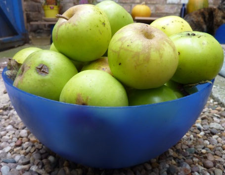 bowl of Derek's apples