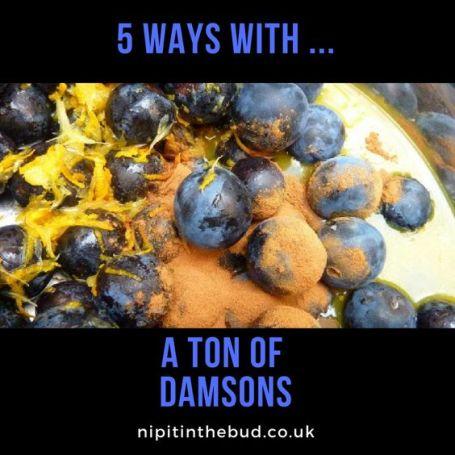 5 ways with a ton of damsons - nipitinthebud.co.uk