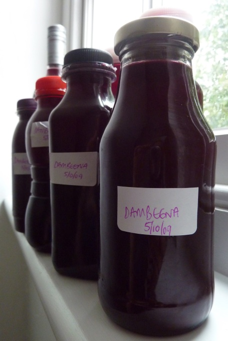 Damson cordial side view