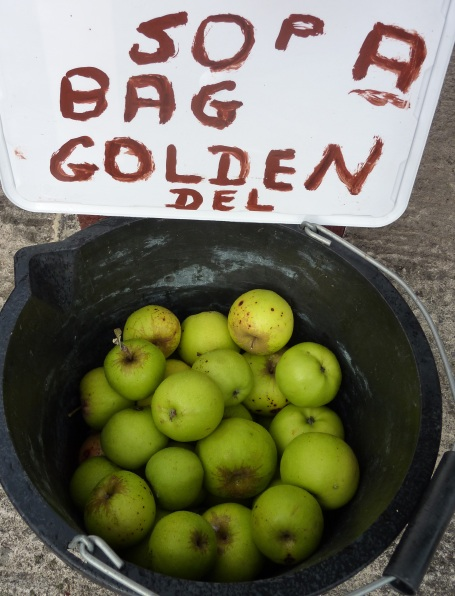 Derek's apples - 50p