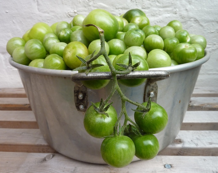 slow cooked green tomato and rhubarb chutney | Nip it in the bud