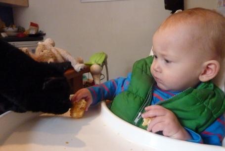 12-1-13 - E feeding Mikey muffin 4B