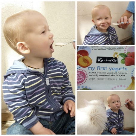 Collage - Rachel's first yoghurts 4B