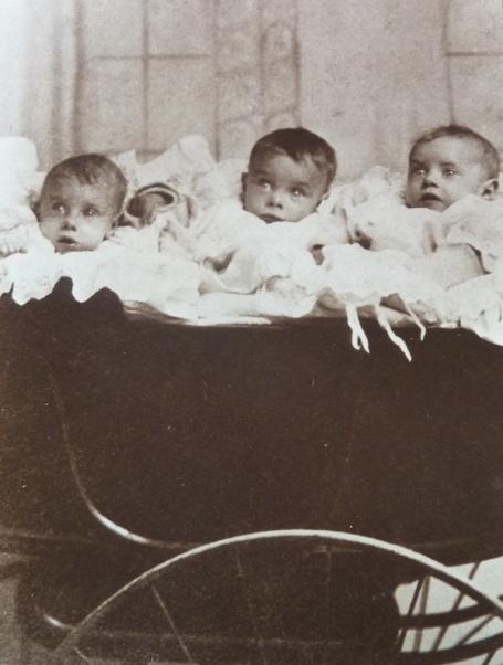 1-6-13 - baby triplets_nan, ethel, freddie 4B