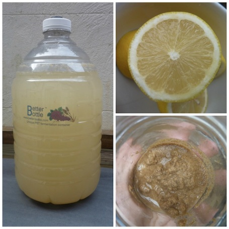 Collage - making ginger beer