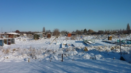 jan snow - for allotment header? 4B