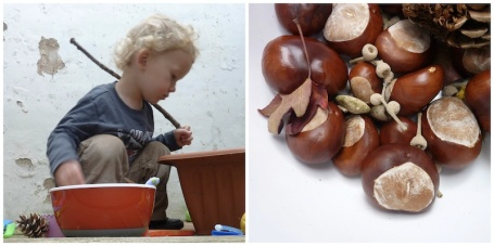 Collage - Oxo bowl_conkers 4B