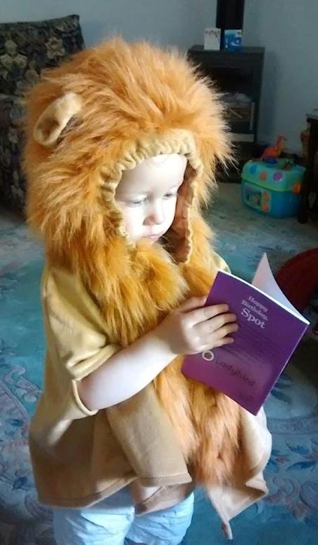 E lion cape