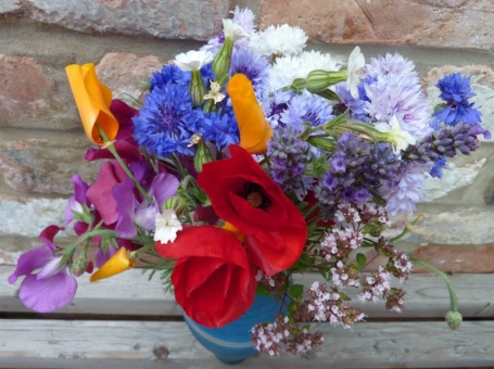3-7-11 - picked allotment flowers 4B