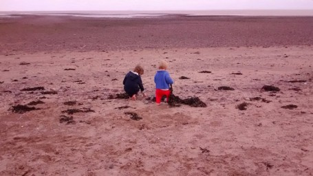 19-8-17 - Dunster beach_brothers exploring seaweed copy 4B