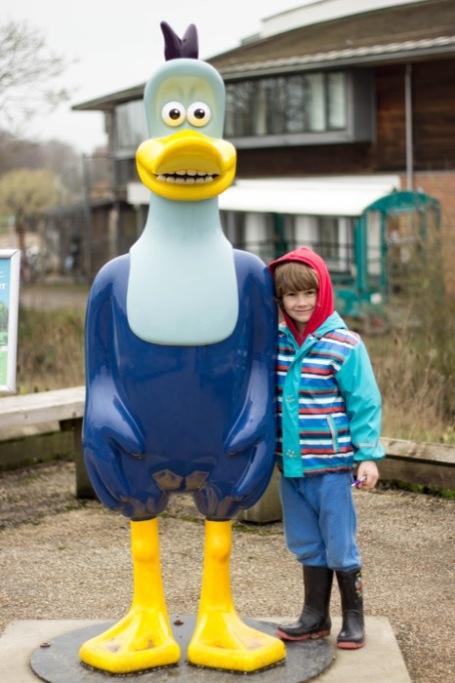 12-4-18- Slimbridge visit with Dusty Duck