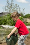 6 year old watering at the allotment