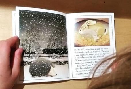 #30dayswild_winter hedgehog - nipitinthebud.co.uk