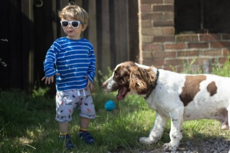 Allotment - toddler and dog playing ball