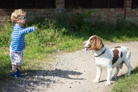 boy and dog at the allotment - nipitinthebud.co.uk