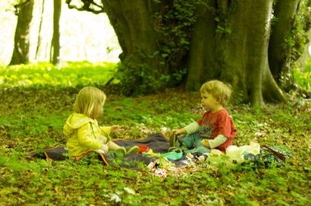 Cranham Woodstoddler picnic - nipitinthebud.co.uk