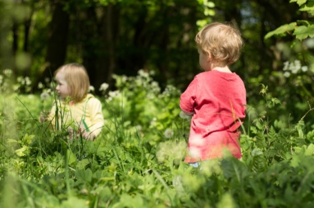Cranham woods with toddlers - nipitinthebud.co.uk