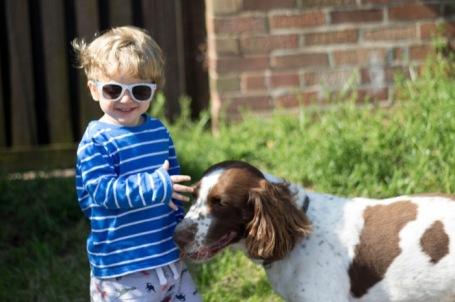 toddler and dog at the allotment - nipitinthebud.co.uk