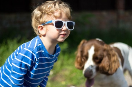 toddler and dog playing ball at the allotment - nipitinthebud.co.uk